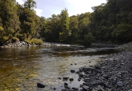 Wilderness Waters with New Zealand Fly Fishing Guide, Tony Entwistle.