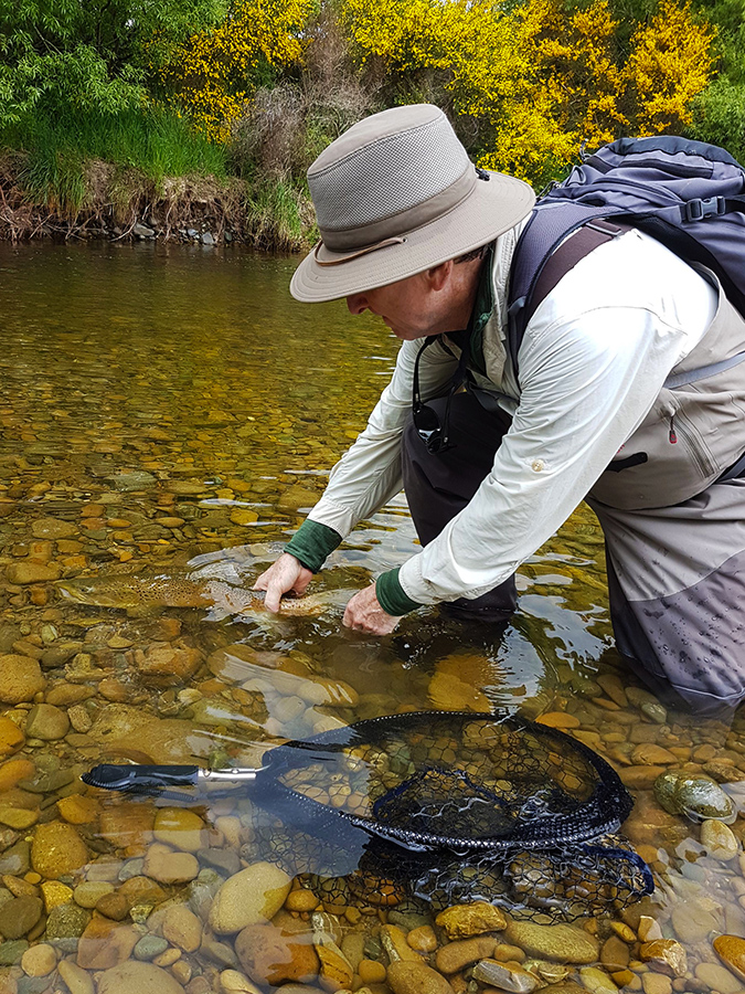 Catch and Release Fly Fishing New Zealand