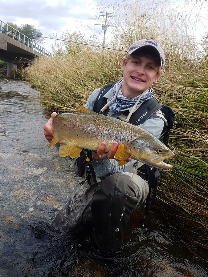 Local River Brown Trout Nelson New Zealand