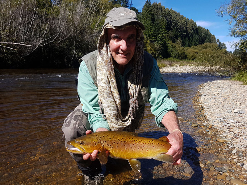 Small Stream Trout Fishing Nelson New Zealand