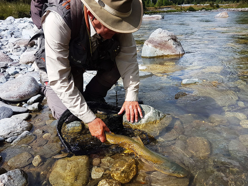 Catch and Release New Zealand Fly Fishing