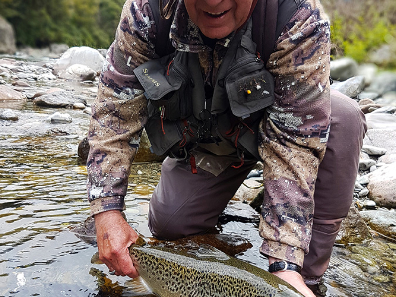 Nelson Back Country Brown Trout