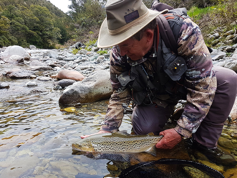 Catch and Release in Nelson Backcountry Waters New Zealand Fly Fishing