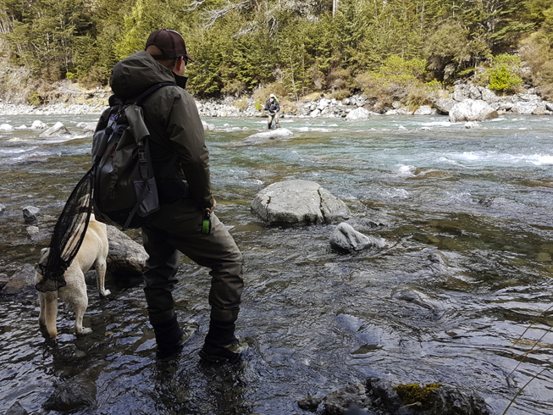Fly Fishing Pocket Water in New Zealand
