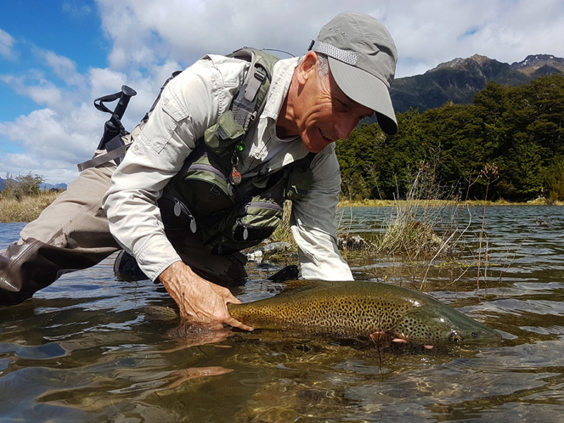 Beautiful New Zealand Brown Trout